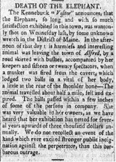 A Haverhill newspaper reports the death of Old Bet.