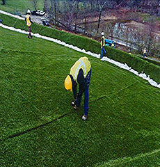 Workers rake out turf strands between seams. (Courtesy photograph.)