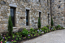 Newly planted gardens on the side of the castle. (Jay Saulnier photograph for WHAV News.)