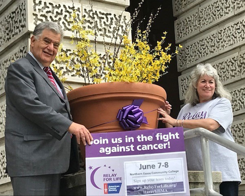 Why Are Purple Ribbons Taking Over Haverhill? Mayor