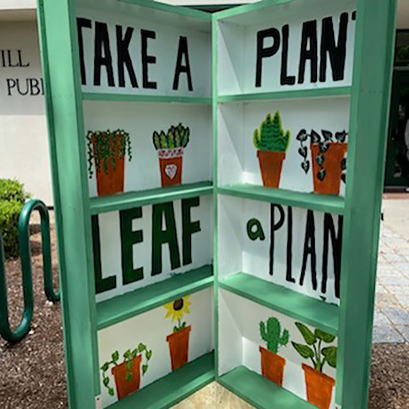'Take a Plant, Leave a Plant' Free Exchange Remains Open at Haverhill Public Library